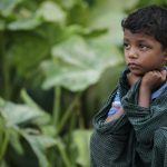rohingya_popolionlus